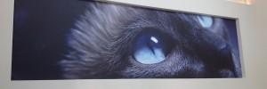 UV štampa na Canvas-u i zatezanje na blind ram