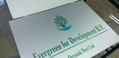evergreen_1